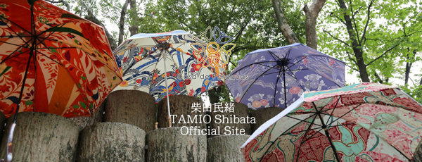 casa de paraguas CASAリメイク作家 柴田民緒さま